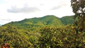 Seychellen Nationalpark