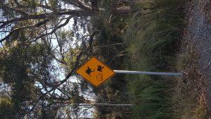 Sign Animals Aware
