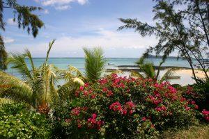 mauritius durchblick