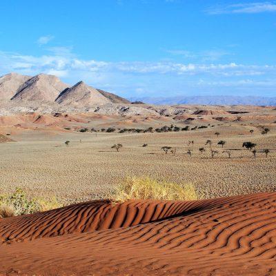 Wüste Namibia Reise